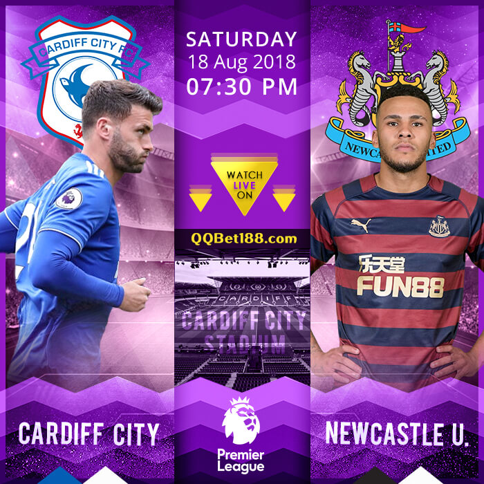 Cardiff City VS Newcastle United