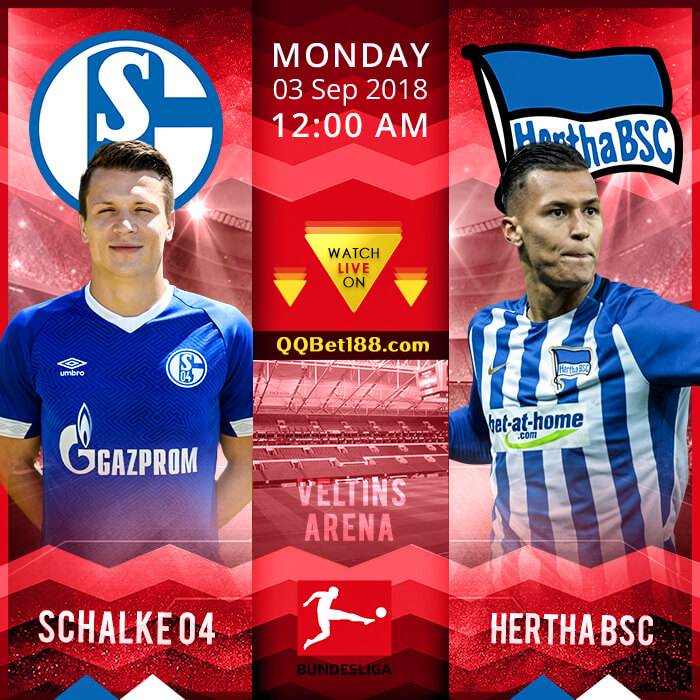 Schalke 04 VS Hertha BSC